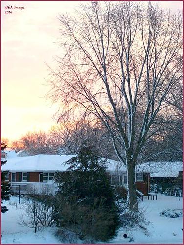 trees winter snow wisconsin sunrise pastel foxlake picmonkey:app=editor
