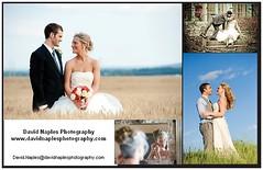 www.www.davidnaplesphotography.com