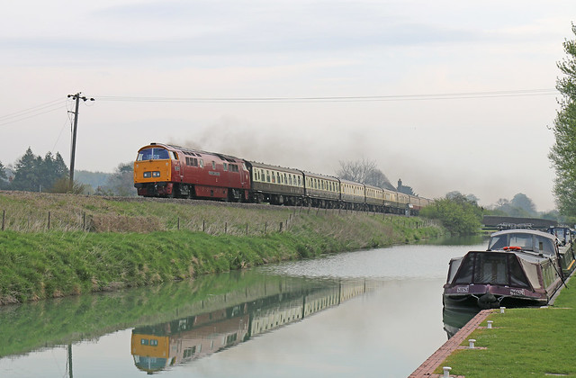 D1015 Western Champion storming through Crofton (explore)