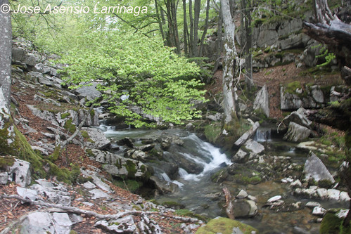 Cascada #DePaseoConLarri #Photography  25