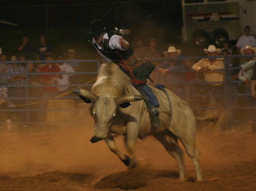 bull riding | by ravensong75