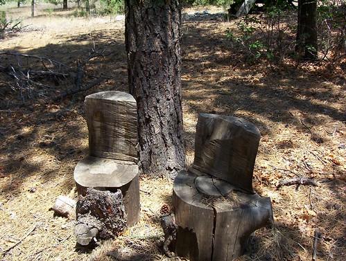 new old sunset wild newmexico church nature mexico fun outdoors ancient chairs wildlife year greenpeace 300 oldtown sandiacrest conserve alburquerque june06 bestnaturetnc06 paulhitz