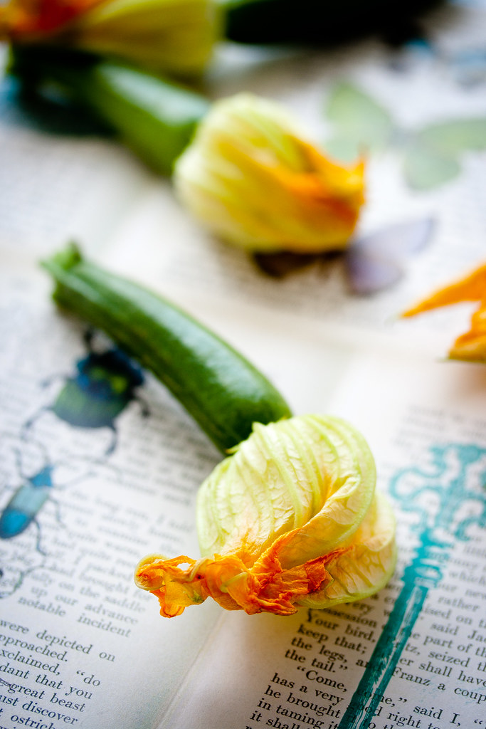 Fiori Zucca.Fiori Di Zucca Zucchinibluten Rezept Jultchik Blogspot De Flickr