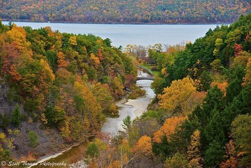statepark bridge autumn trees lake newyork fall nature water creek river nikon unitedstates d750 gorge ithaca fingerlakes cayuga taughannockfalls scottthomasphotography
