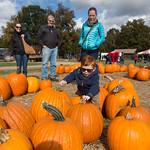 Riding the pumpkin