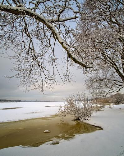 branches clouds coast daugava horizon ice landscape latvia outdoor riga river sky snow vidzeme winter
