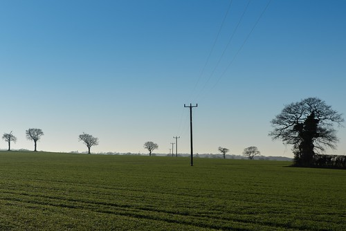 lines tamron d750 2470mm sunset east pole light trees silhouette wires minimal banal mundane fields anglia imanoot nikon telegraph norfolk dusk