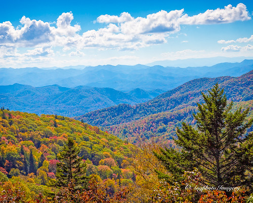 augphotoimagery blueridgeparkway mountains nature outdoor outdoors scenic trees scottcreek northcarolina unitedstates
