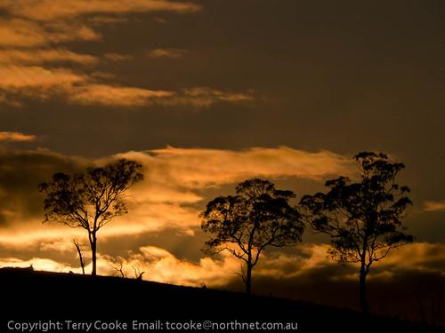 photographer armidale terrycooke tcookenorthnetcomau terrencecooke cookesroad