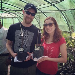 We learned how to graft cocoa plants at Hotel Chocolate
