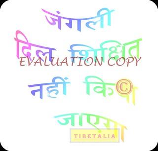 HINDI-translation-tattoo-design-DEVANAGARI-script-flash-by