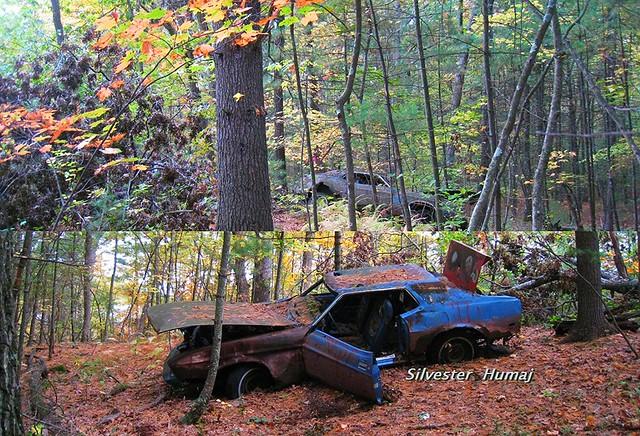 1973 Ford Mustang Hardtop