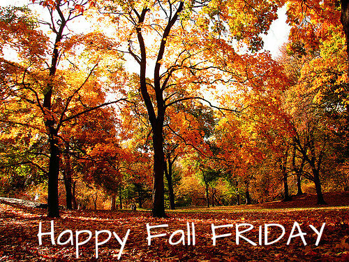 Image result for happy fall friday