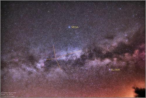 morning canon stars star spring cluster galaxy nebula astrophotography lyra april northamerica astronomy opencluster vega milky constellation milkyway altair 2014 northernhemisphere cygnus widefield skyglow samyang skytracker ioptron tomwildoner