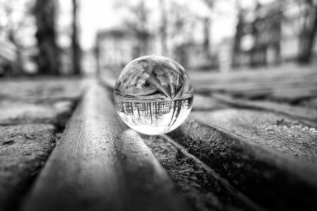Shot through glass - Explored