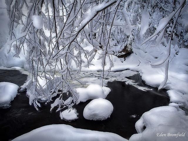 Mid Winter Stream