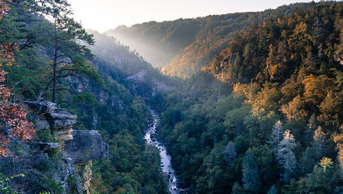 park trees nature georgia landscape stream hiking tallulahfalls tallulahfallsgeorgia tallulahfallsstatepark