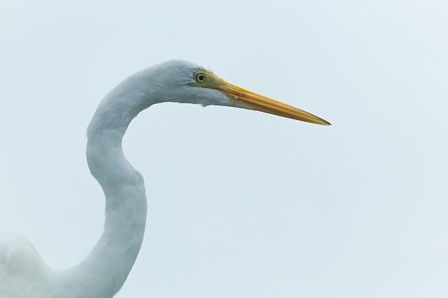 2013-12-29 at 15-34-29 - Florida Keys