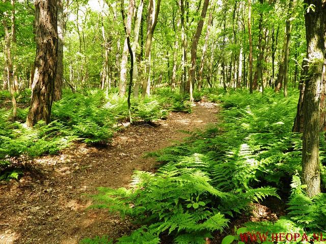 Doorn      19-05-2015         32.5 Km (78)