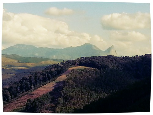 pedraazul flickrandroidapp:filter=iguana