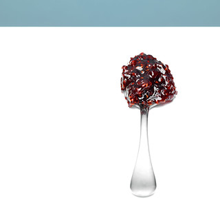 framboise pépins | by studio mixture