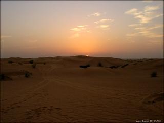 Desert Safari 304   by Dr Korom