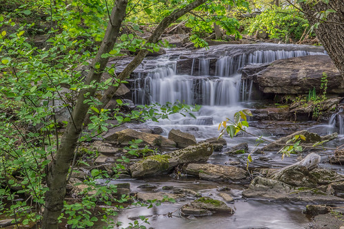 park nature forest river spring sony scenic falls cascade overflow larchmont