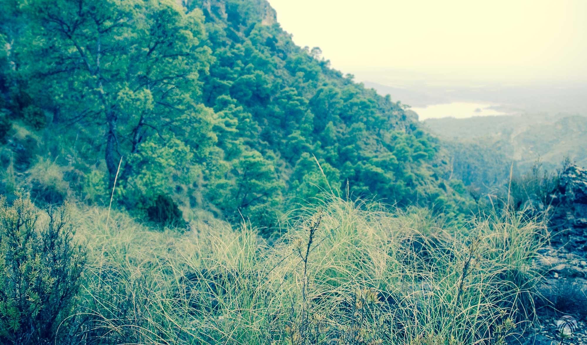 El tiempo vuelve a cerrarse justo cuando ganamos vistas al embalse del río Quípar