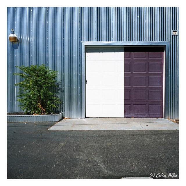 Bi-colored Door