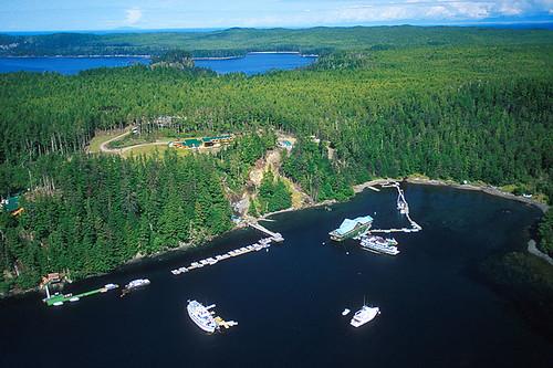 Langara Island, Haida Gwaii, British Columbia, Canada