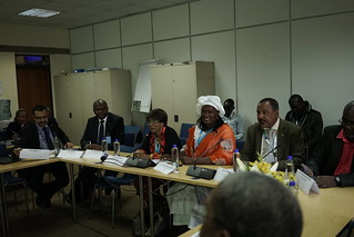 UNEA Green Room Event - Sargassum in West Africa and the Caribbean, May 2016
