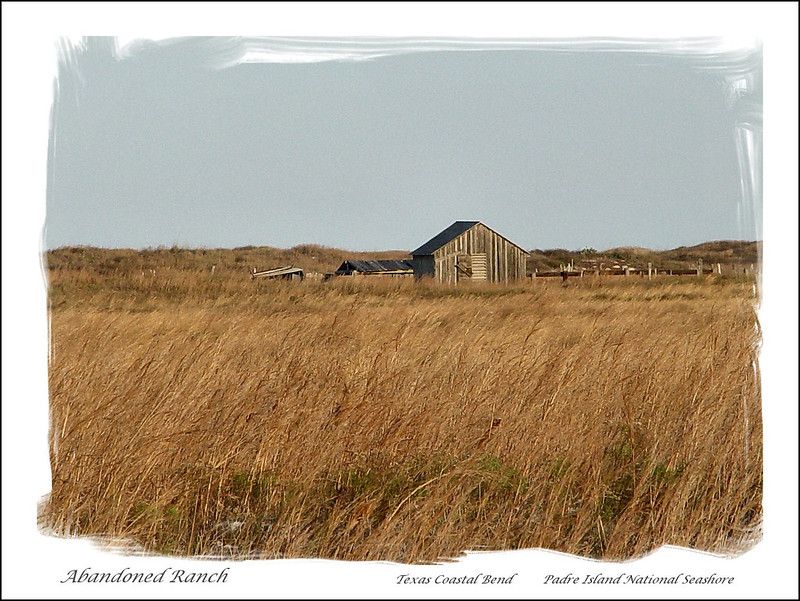 07828-Abandoned Ranch