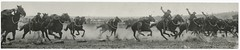 18th/23rd Light Horse, 1931