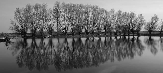 Farm Pond-IMG_0045ps4