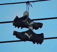 puma boots photo
