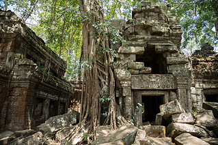 Ta Prohm temple in Angkor Wat, Cambodia. | by cookiesound