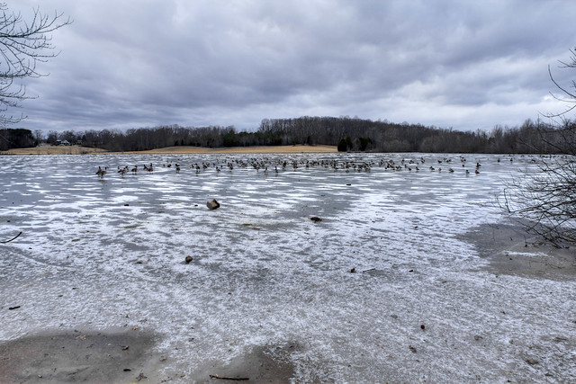 Cane Creek Lake frozen, Cookeville, Tennessee