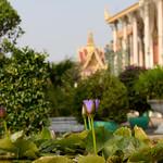 02 Phnom Penh 33