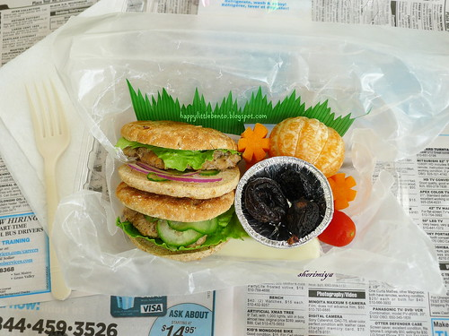 Double Slider Field Trip Bento | by sherimiya ♥