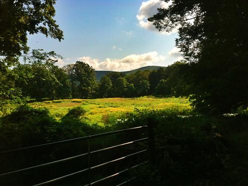 clouds farm kentct farmgate litchfieldcounty cobblelane iphoneography viewway dogwalkingphotos