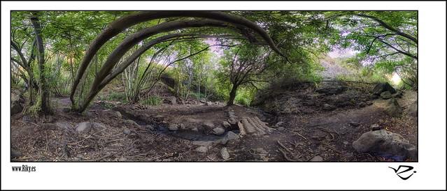 :: Barranco de los Cernicalos III 360º ::