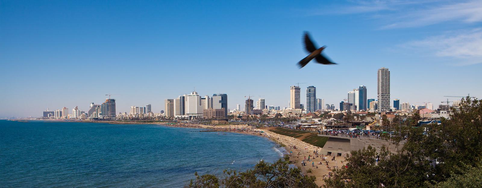 Tel Aviv _Panorama_Dana Friedlander_IMOT