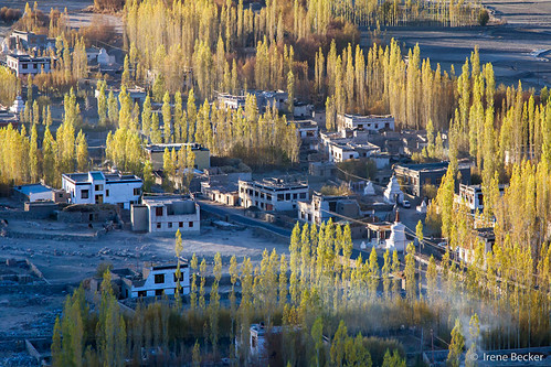 morning autumn india mountain sunrise asia buddhist buddhism monastery himalaya ladakh imagesofindia northindia jammukashmir ladakhi littletibet incredibleindia indianimages thiksemonastery thiksegompa lastshangrila thikseyvillage irenebecker irenebeckereu buddhismphoto northindiasunlight moonlandonearth