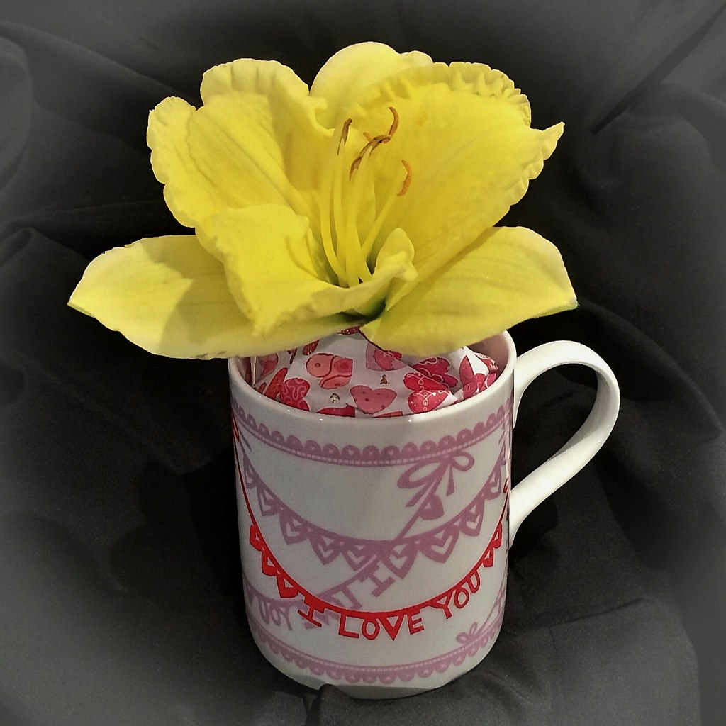 Chinese Wedding Gift Money Amount: A Day Lily In A China Mug