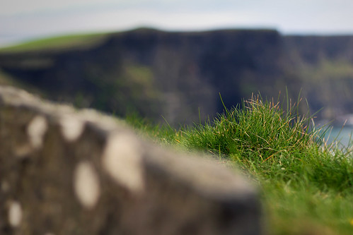 Grass of Moher | by Iestyn Roberts