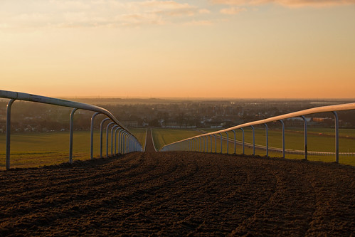 light sunset sky newmarket gallops image6100 100xthe2015edition 100x2015