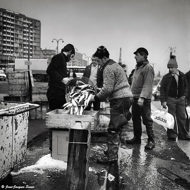 0372 - Débarquement du poisson, Boulogne sur mer, 1974