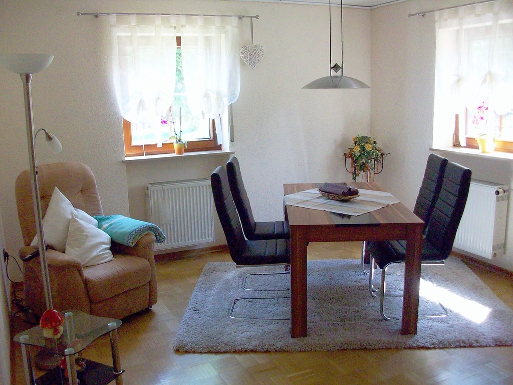 EG-Wohnung