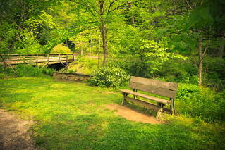 Bench and Bridge, Botanical Gardens, Asheville, NC | by Sharon Mollerus