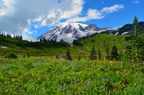 More of Mt. Rainier | by Anupam_ts
